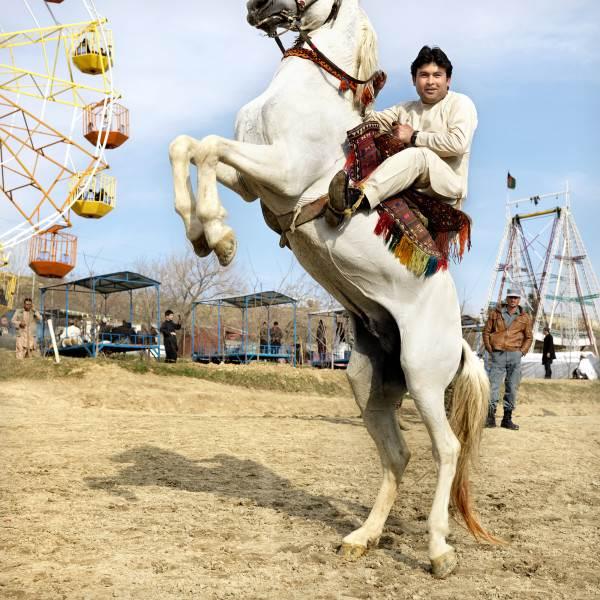 Steigerend Paard Bij Gharga Meer, Kabul