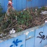 I rifiuti nelle aree verdi