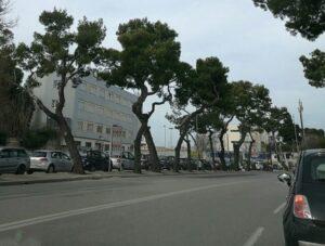 toppe asfalto corso Vittorio Veneto